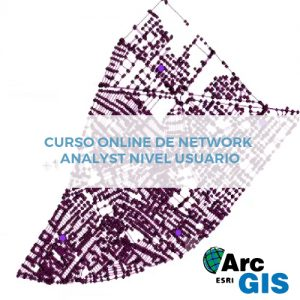 Curso Online de Network Analyst Nivel Usuario