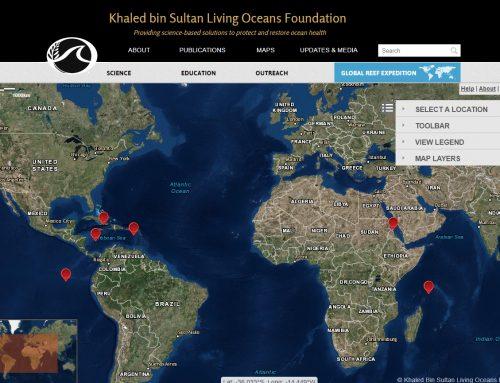 Visor cartográfico sobre el estado de los arrecifes de coral a nivel mundial