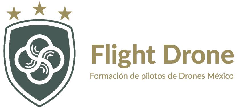 Flight-Drone1