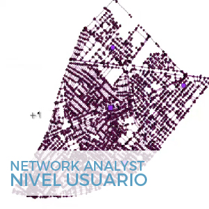 network analyst nivel usuario