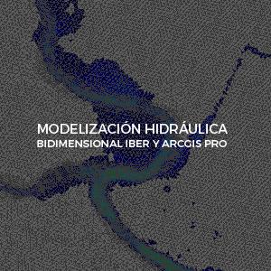 ArcGIS Pro Modelizacion hidraulica bidimensional inv