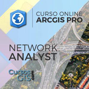 Curso Online arcgis pro network
