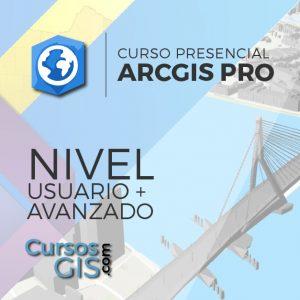 Curso Presencial ArcGIS Pro Especialista