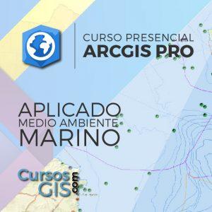 Curso Presencial de Arcgis Pro Aplicado al Medio Ambiente Marino-44