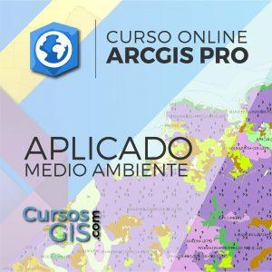 Curso Online ArcGIS Pro Medio Ambiente