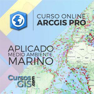 Curso Online arcgis pro aplicado al medio marino