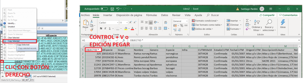 descarga_inventario_especies_13
